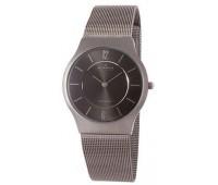 Наручные часы Skagen 233LTTM